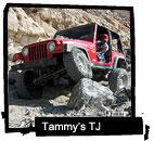 Tammy's TJ